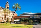 Transforming the South Australian Museum - The Adelaide Review