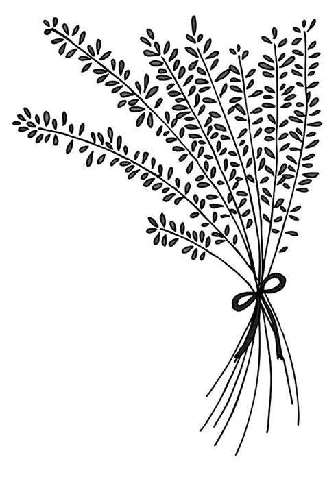 lavender flower arrangement coloring pagesjpg