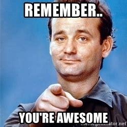 You Re Awesome Meme - bill murray stripes meme generator