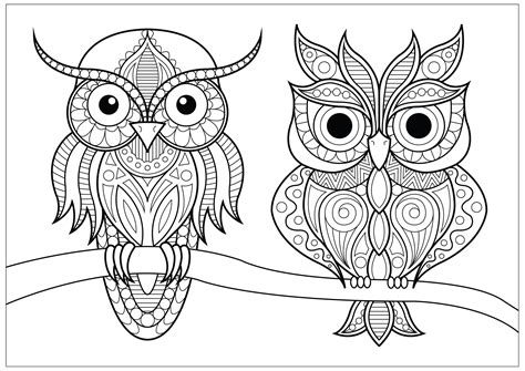 Pictures Of Owls To Color by Two Owls With Simple Patterns On Branch Owls