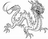 Coloring Dragon Pages Detailed Adults Popular sketch template