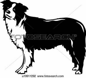 Light Sheltie Collie Clipart 20 Free Cliparts Download Images On