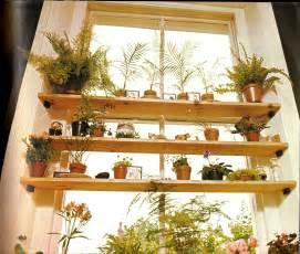 House Window Shelves Plants
