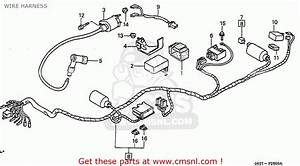 Mallory Pro Comp Ignition Wiring Diagram