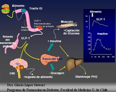 diabetes mellitus tratamiento medwave