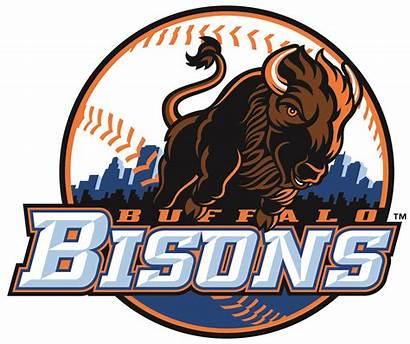 Baseball Bison Buffalo Bisons Sports Logos Team