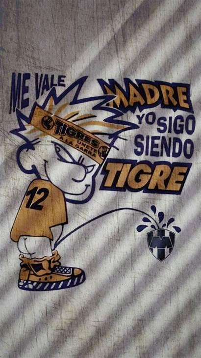 Tigres Uanl Lokos Incomparables Libres Leon Nuevo