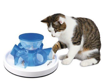 cat puzzle feeder cat treat dispensers reviews and getting
