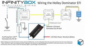 Wiring The Holley Dominator Efi System  U2022 Infinitybox