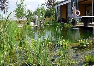 Tauchbecken Im Garten : klares wasser im teich mit zeolith bodensubstrat f r wasserreinigung ~ Sanjose-hotels-ca.com Haus und Dekorationen