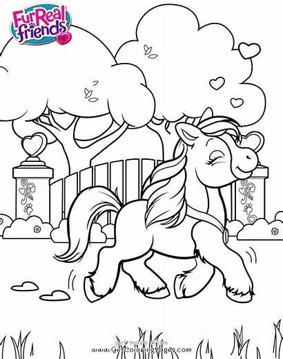 Friends Coloring Pages Furreal Butterscotch Colouring Pony