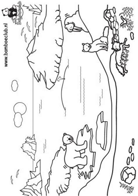Kleurplaat Noordpool by Ijsbeer Noordpool Wnf Bamboeclub Dieren