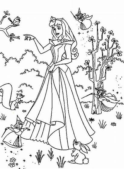 Princess Coloring Aurora Princesa Bela Desenhos Colorir