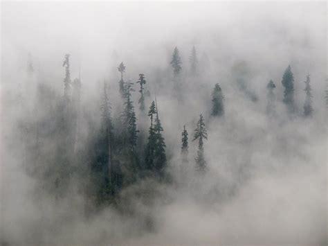 Mist Drifting Over The Mountain