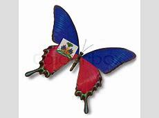 Haiti flag on butterfly Stock Photo Colourbox