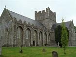Kildare Cathedral - Wikipedia