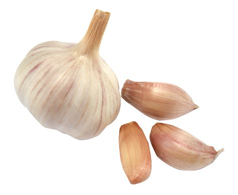garlic cloves garlic png image pngpix