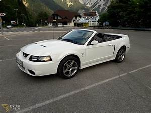 2003 Ford Mustang SVT Cobra Convertible for Sale - Dyler
