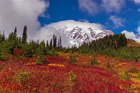 Mount Rainier National Park, Pierce County, Washington