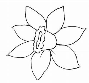 spring blossoms printable patterns With template of a daffodil