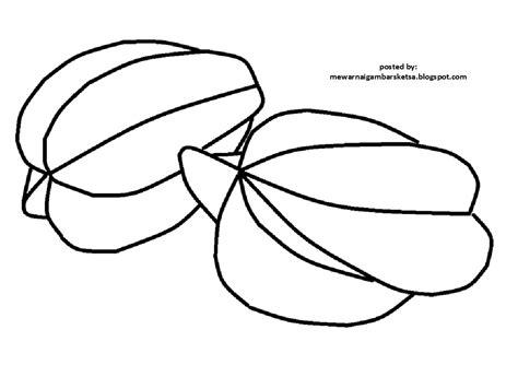 mewarnai gambar mewarnai gambar sketsa buah belimbing 4