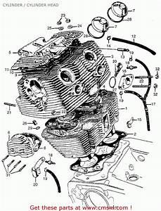 Honda Cl77 Scrambler 1965 Usa    305 Cylinder    Cylinder