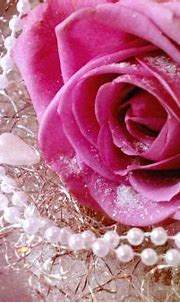 Pin by Amy ♥ on PINK ;D | Rose, Flower wallpaper, Pink roses