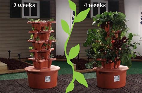 read this grow up hydrogarden review grow green food