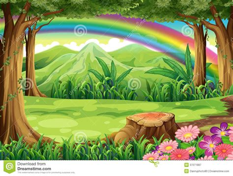 rainbow   forest royalty  stock photography