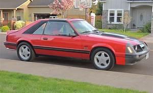 83 Mustang   Mustang burbuja, Mustang y Burbuja