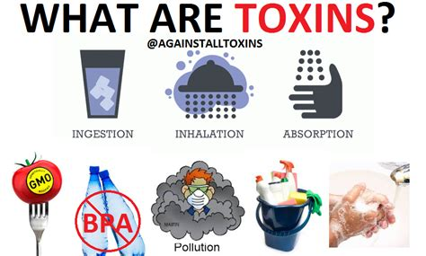 What Are Toxins?  Against All Toxins