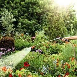 pflanzen richtig giessen blumen wassermangel osmose