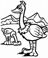 Ostrich Coloring Animals Printable Sheet Animal sketch template