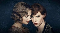 Nonton Streaming Film The Danish Girl (2015) Full Movie ...