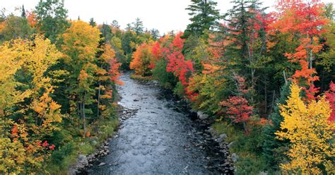 top fall color drives  michigan