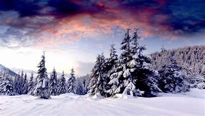 Winter Desktop Background Scene Iphone
