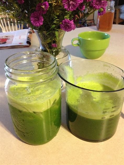 juice lettuce recipes celery kale recipe apples romaine smoothie cucumber juices juicers smoothies healthy lime