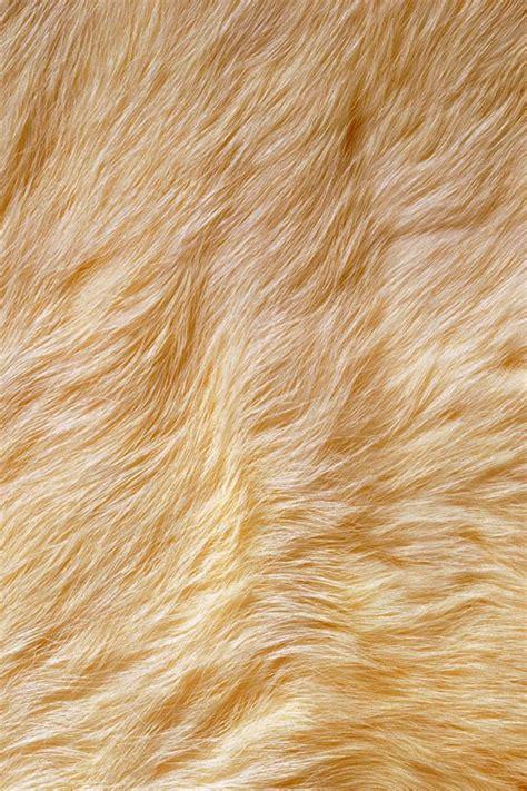 Textured Animal Print Wallpaper - fur iphone wallpaper iphone wallpapers iphone