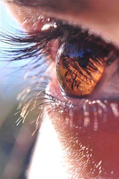 ojos marrones on