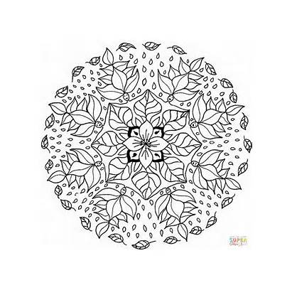 Coloring Floral Mandala Pattern Pages Template Printable