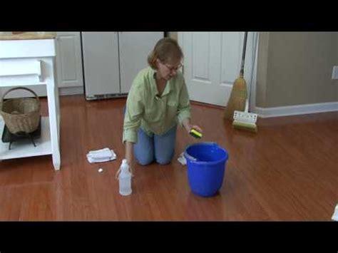Cat Hardwood Floor Vinegar by Cleaning Floors How To Remove Cat Urine From Hardwood