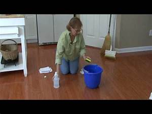 How to remove cat urine smell for Cat urine on hardwood floors
