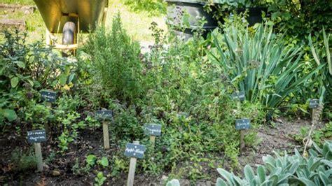 kräutergarten anlegen beispiele anlegen kurzfristig anlegen tage bis monate with anlegen affordable anlegen an die brust