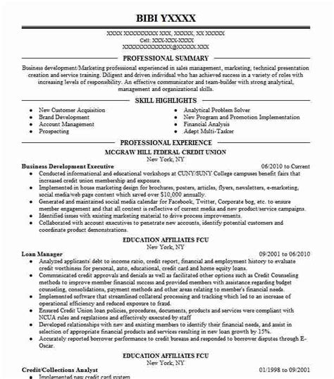 Business Development Resumes by Business Development Executive Resume Sle Livecareer