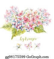 stock illustration ivy  hydrangea floral border