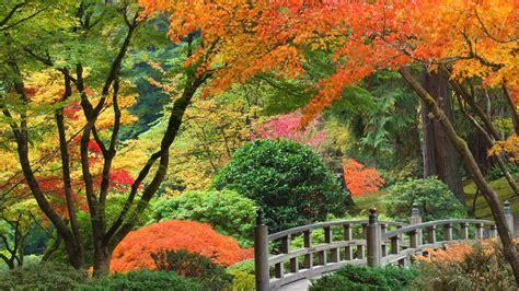 garden desktop japanese backgrounds wallpapers zen wallpapersafari garten galaxyquest ideen
