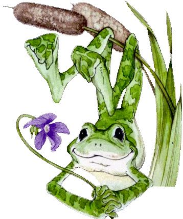 Résultat d'images pour gift grenouille