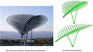 Canopy Leaf Structure  Countdown Te Rapa