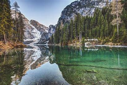 Forest Lake Environment Landscape Water Nature Natur