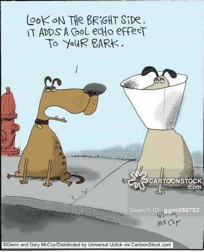 dog cone cartoons  comics funny pictures